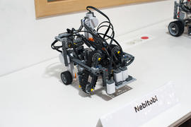 2015 World Robot Olympiad 11